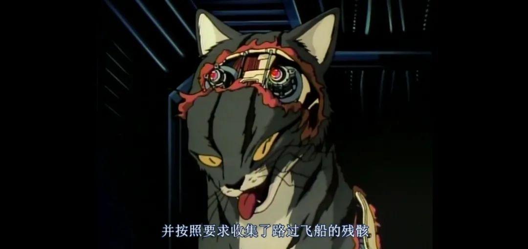 30多年前的恐怖猎奇科幻动画「灵猫」,一部模仿异形的佳作